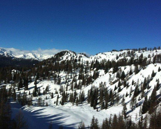 MADONNA DI CAMPIGLIO SNOWBOARD LM BOARD STORE